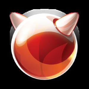 FreeBSD 11.4 - DVD