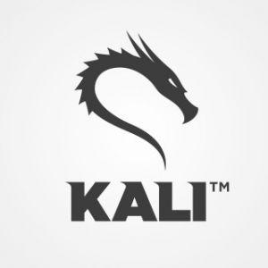 Kali Linux 2020.4 - USB