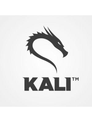 Kali Linux 2020.4 - DVD